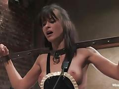 cecilia's breasts match princess donna's dress!