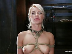 beautiful blonde hanging tied up is fucked